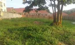 KOMAMBOGA : 100 by 100 for sale at 170m