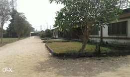 Genuine 15plots of land with three NO of 3bedroom for sale in Elimgbu