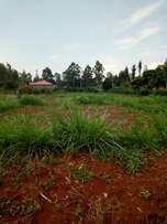 Prime Plots for Sale. Wambugu Farm Nyeri