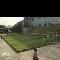 Artificial grass experts and installers