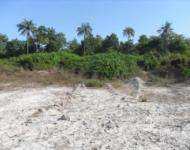Diani south coast Mombasa 4.5 acres for sale at 8M per acre