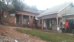 A residential house on urgent sale at 45m in kireka D 5ox80fts kabaka