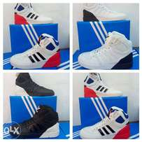 Adidas Latest Hi Top Footwear