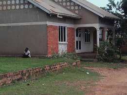 Hot deal to any one ready to buy. House for sale at kawanda.(1/2 acre)