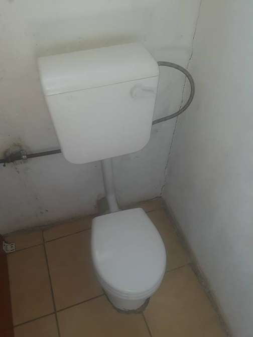 Fantastic Toilet Seats In South Africa Value Forest Caraccident5 Cool Chair Designs And Ideas Caraccident5Info