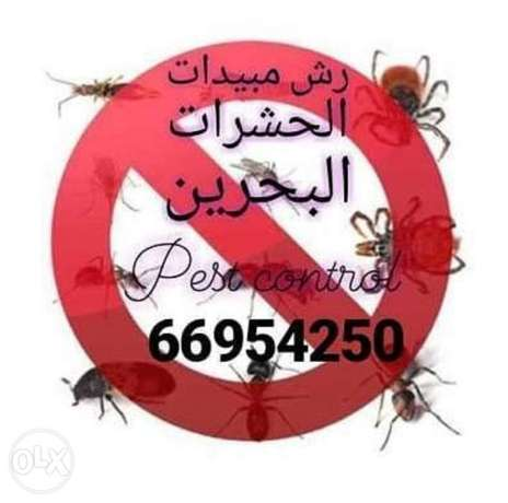 Pest control services with proffesional staff