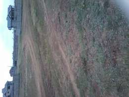 50*100 plot in juja. With title. 4km from highwy. 100 mtrs from rd