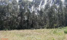 1/4 acre land in Kikuyu -Ondire only 4kms from Southern by-pass