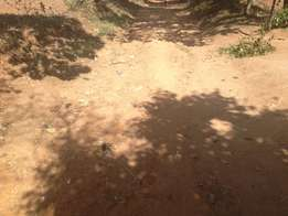 selling 1/2acre in namasanda