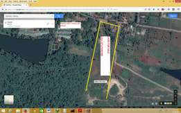 Top quality land for sale