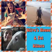 Olive's House & Pet Sitters