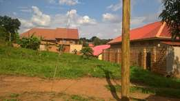 Plot 100ft by 50ft Good For Rental House Bussines For Sale 35m At Nans
