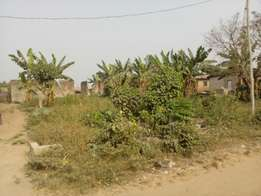 For Sale: A Full Plot of Land in Ogun State.