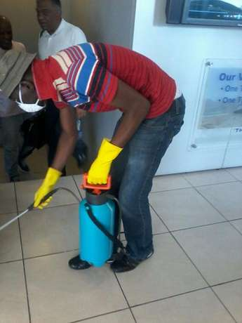 Pest Services and Cleaning Johannesburg - image 7