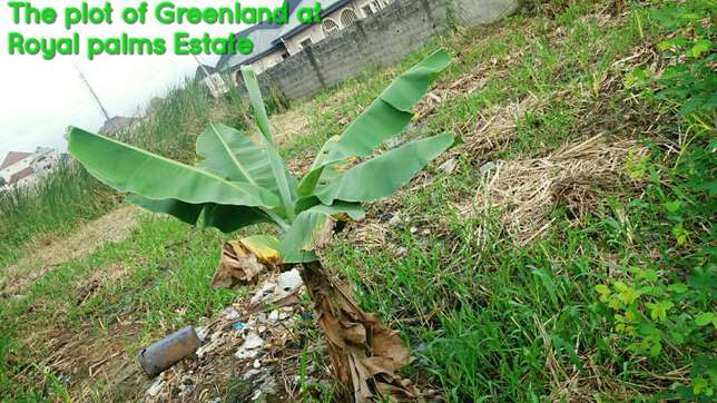 A freehold plot of land for sale Amuwo Odofin - image 1