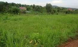 1/8 acre plots in kagio town in kirinyaga county