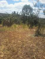 1.8 acres at saba saba, Murang'a county. Approx 2.5km off tarmac.