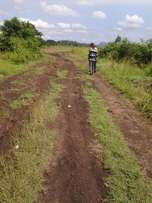Farming land for sale Lease at Adeiso Nsawam