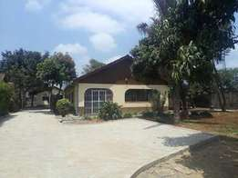 Mt view 4 bedrooms bungalow to let