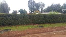 1/4 plot at annex buzeki with title 70meters from tarmac