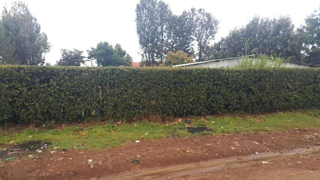 1/4 plot at annex buzeki with title 70meters from tarmac Eldoret North - image 1
