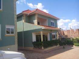 Octopus 5 bedroom fullly furnished house for rent in Muyenga at 5.1m