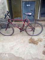 Galant and strong bicycle
