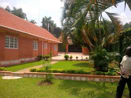 A four bedroom standalone house for rent in naguru