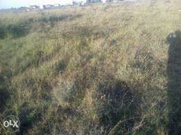 Hurlingum at Yaya Center Land on Sale (2 Plots of 1/4 an Acre each).