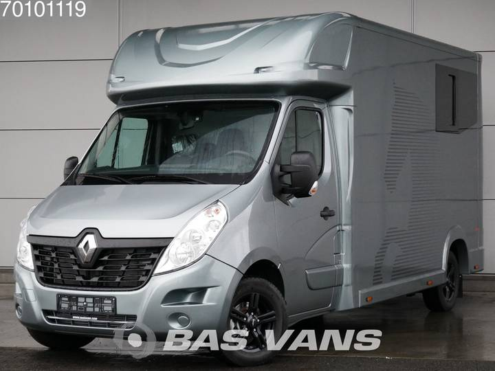 Renault Master 2.3 dCi 130 Paardenwagen Pferdetransporter Horse H... - 2019