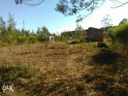 1/4plot with house royalton madona