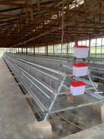 Battery Chicken Cages