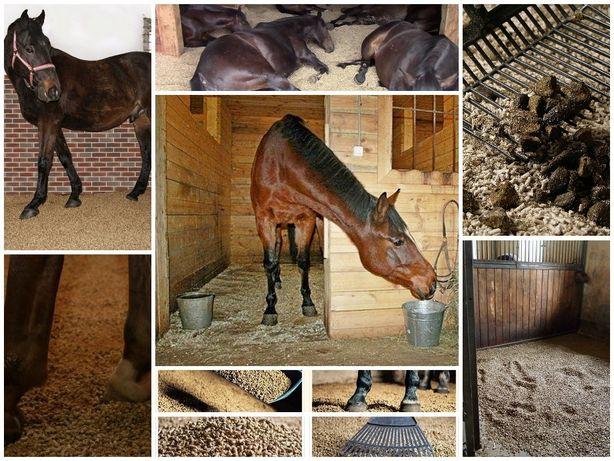 Poważnie Ściółka dla koni i zwierząt pellet dla zwierząt Opole • OLX.pl QR07