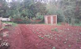 1/8 Acre plus at Muguga Thamanda