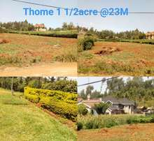 Thome plot for sale
