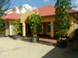 Own compound 4bedroom to let Syokimau