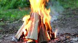 FIREWOOD For Pizza ovens, Braai's, Bonfires, Fireplaces, Cooking
