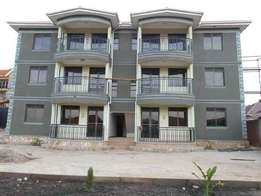 2bedrooms 2bathroom brand new apartment for rent in Muyenga