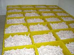Grade A Processed Frozen Chicken Feet/Paws for sale. / Frozen Chicken