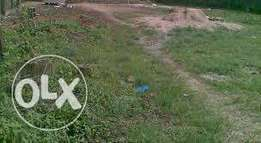 A Land with certified survey plan for sale around BIU sapele road