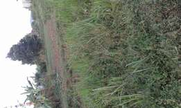 150feets by 100feets (38decimals) plot on sale at bweyogerere Butto
