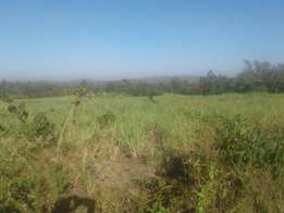 21acre for SALE.