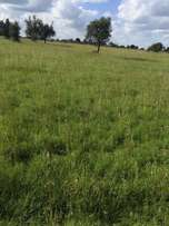 1 acre in Ongata rongai