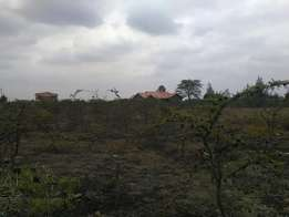1/8th Acre in Syokimau