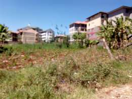 Commercial 1/4acre plot in kiamumbi estate with title deed