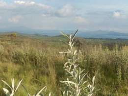 Great Rift Lodge(Green Park) 25 acre phase next to the Airstrip.
