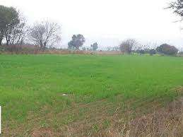 5acres land for sale