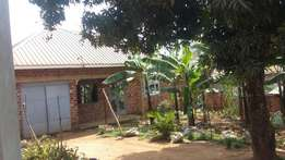 3 bedrooms house with 4 boy's quaters for sale in salaama munyonyo rd