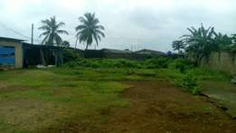 A Plot Of Land For Sale!!