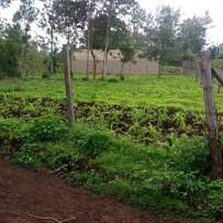 1/4 acre land at Kithoka. ( Meru)